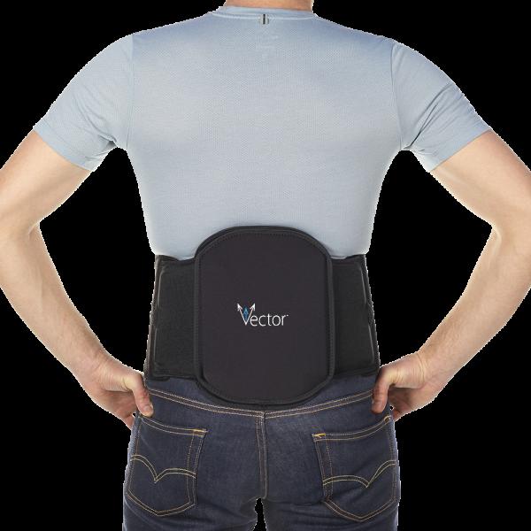 Vector Lumbar Support